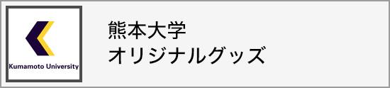 ホームページ 熊 大
